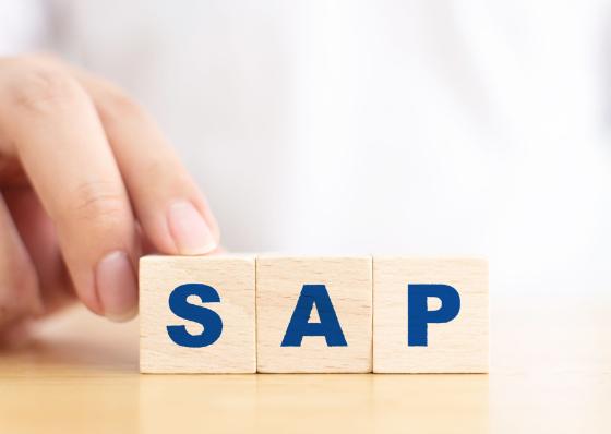 SAPを導入!メリットやデメリットおよび成功のポイントを解説
